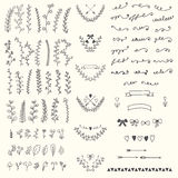 Hand Drawn vintage floral elements. Handsketched vector design e Royalty Free Stock Photos