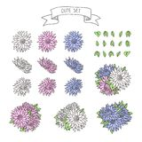 Hand drawn vintage floral elements for a wedding, Stock Photo