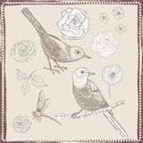 Hand drawn vintage flowers and birds set Stock Photo