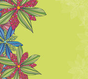 Hand drawn vintage flowers and floral elements for holidays Royalty Free Stock Photos