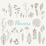 Hand drawn vintage flowers set Stock Images