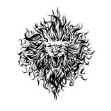 Hand drawn  vintage graphic lion head. Royalty Free Stock Photos