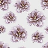 Hand-drawn vintage hibiscus pattern. Vintage penciled hibiscus seamless pattern Stock Images