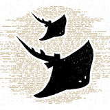 Hand drawn vintage icon with a textured stingrays vector illustration Stock Photo