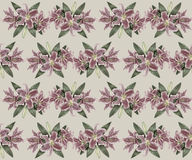 Hand-drawn vintage lily seamless pattern. Gentle vintage pattern with pink lily flowers Stock Image