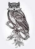 Hand drawn vintage Owl with a letter manuscript. Royalty Free Stock Photo