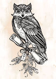 Hand drawn vintage Owl with a letter manuscript. Stock Photo