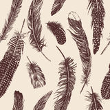 Hand drawn vintage pattern with feathers. Vector. Hand drawn vintage set with different feathers. Vector Stock Image