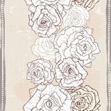 Hand drawn vintage  roses  seamless border Stock Photos