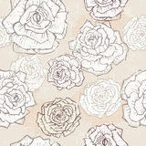 Hand drawn vintage roses seamless pattern Stock Photos