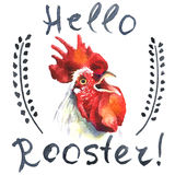 Hand-drawn  vintage style rooster card Royalty Free Stock Photo