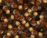 Hand Drawn Walnuts Texture Hazelnuts Stock Images