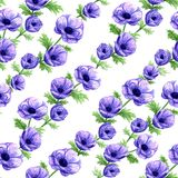 Hand drawn watercolor anemones seamless pattern stock illustration