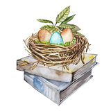 Hand drawn watercolor art bird nest with eggs on the books, easter design.  illustration on white background. Stock Photo