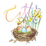 Hand drawn watercolor art bird nest with eggs and spring flowers , word-easter. Isolated illustration on white vector illustration