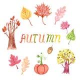 Hand drawn watercolor autumn clipart. stock illustration