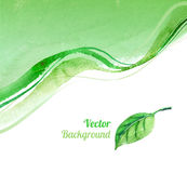 Hand drawn watercolor background with leaf stock illustration