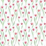 Seamless floral pattern in pink, green, red colors. Tulips. stock illustration
