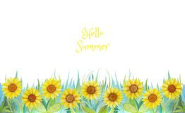 Blue and green grass with bright flowers. Sunflowers isolated on white background. royalty free illustration