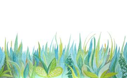 Hand drawn watercolor botanical illustration. Blue and green grass. stock illustration
