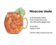 Hand drawn watercolor cocktail Moscow mule Vodka buck on white background royalty free illustration