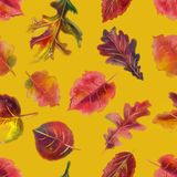 Hand drawn watercolor colorful autumn seamless pattern royalty free stock photos