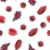 Hand drawn watercolor colorful autumn seamless pattern royalty free stock images
