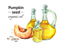 Hand drawn watercolor composition with bottles of Pumpkin seed oil Stock Image