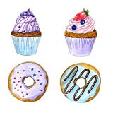 Hand drawn watercolor cupcake and donuts isolated set vector illustration