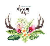 Hand drawn watercolor deer horns with tropical flower bouquets. Exotic palm leaves, jungle tree, brazil tropic botany. Flowers and cow skull. Aloha print vector illustration