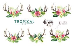 Hand drawn watercolor deer horns with tropical flower bouquets. Exotic palm leaves, jungle tree, brazil tropic botany vector illustration