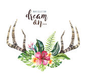 Hand drawn watercolor deer horns with tropical flower bouquets. Exotic palm leaves, jungle tree, brazil tropic botany Royalty Free Stock Photography