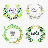 Hand drawn watercolor elements of olive oil Royalty Free Stock Photography
