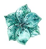 Watercolor fashion illustration of flower brooch in turquoise color royalty free illustration