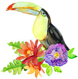 Hand drawn watercolor floral bouquet with tropical flowers, leaves and big toucan bird Stock Photo