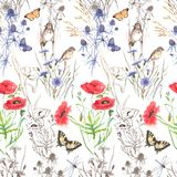 Hand-drawn watercolor floral seamless pattern Stock Photography