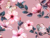 Hand-drawn  watercolor floral seamless pattern with the tender white and pink hibiscus flowers and butterflies. Natural tropical and vibrant repeated print for Royalty Free Stock Photos