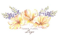 Watercolor floral spring logo. Hand-drawn watercolor floral spring logo. Yellow tulips and blue hyacinth flowers. Beautiful and tender blossom in the bouquet Stock Illustration