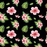Watercolor floral tropical seamless pattern with green monstera leaves and pink hibiscus flowers on black vector illustration
