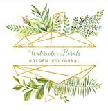 Hand drawn watercolor florals with golden polygonal elements. Frame design with leaves, plants, flowers and geometrical elements Stock Images