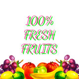 Hand drawn watercolor fresh organic fruits illustration set on white background. Vector Stock Photography