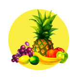 Hand drawn watercolor fresh organic fruits illustration set on white background. Vector Stock Photo