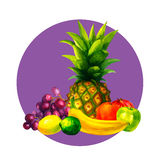 Hand drawn watercolor fresh organic fruits illustration set on white background. Vector Royalty Free Stock Image