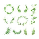 Hand Drawn Watercolor Green Natural Frames Royalty Free Stock Photos