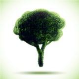 Hand Drawn Watercolor Grunge Tree. Vector Illustration royalty free illustration