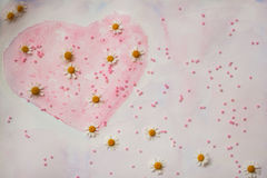 Hand-drawn watercolor heart, decorated with beads and fresh daisies - a symbol of Valentine`s Day, delicate pink Stock Photo