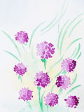 Hand drawn watercolor illustration of purple flowers. Hand drawn watercolor illustration of beautiful wild purple  flowers with warm yellow light Stock Photos