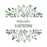 Hand drawn watercolor illustration. Botanical frame with green b. Ranches, berries, herbs and leaves. Summer mood. Floral Design elements. Perfect for vector illustration