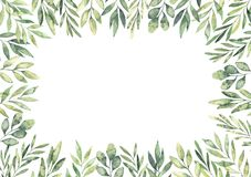 Hand drawn watercolor illustration. Botanical rectangular border. With green branches and leaves. Spring mood. Floral Design elements. Perfect for invitations royalty free illustration