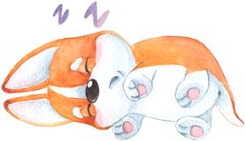 Hand drawn watercolor illustration with cute little orange corgi dog puppy sleeping and smiling